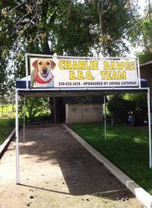 charlie dawgs